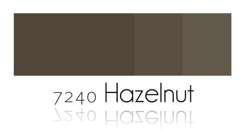Color Painting - Hazelnut