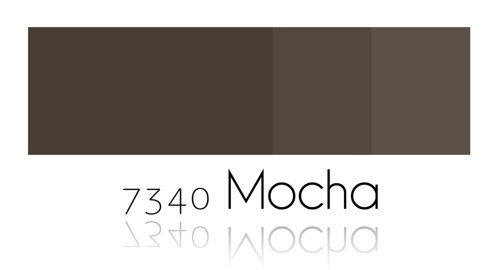 Color Painting - Mocha