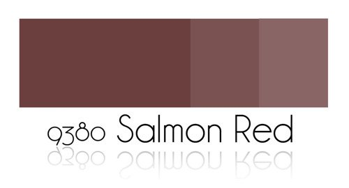 Color Painting - Salmon Red
