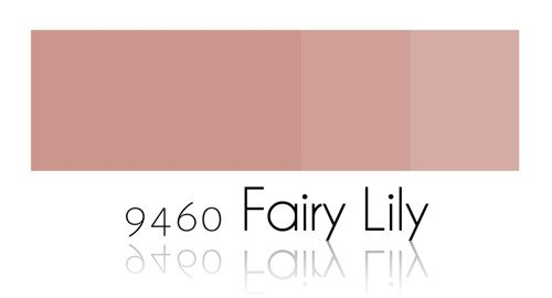 Color Paiting - Fairy Lily